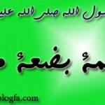چهل حدیث درباره حضرت زهرا علیها السلام